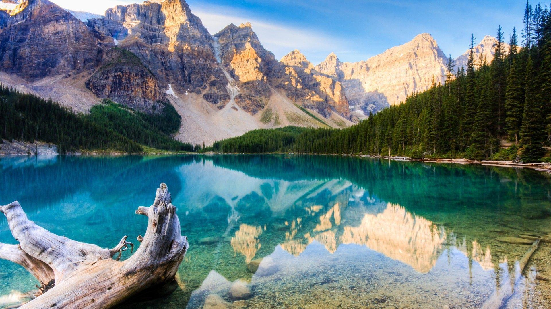 68 Best Free 4k Nature Wallpapers Wallpaperaccess
