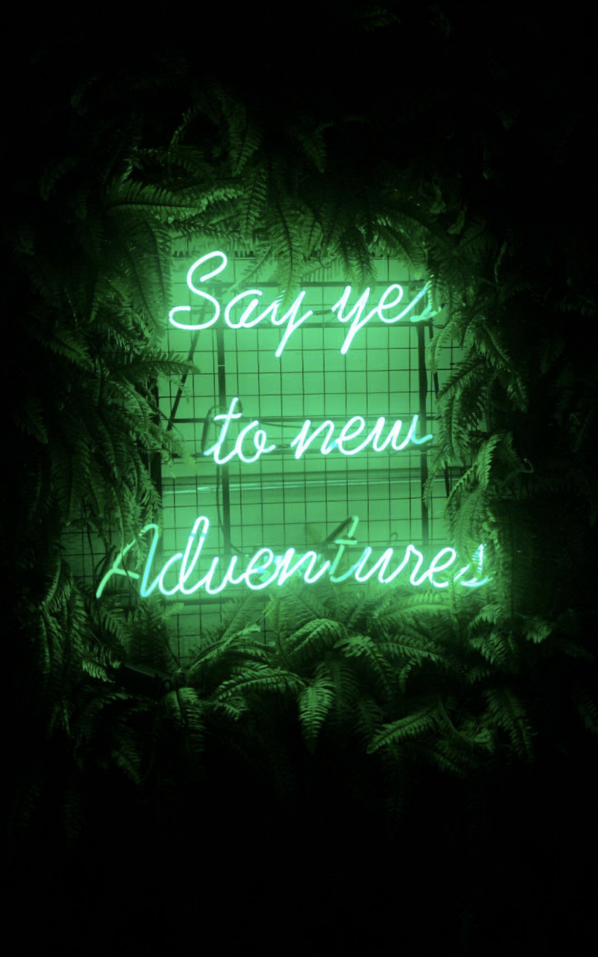 Cool Dark Green Aesthetic Wallpapers - Top Free Cool Dark ...