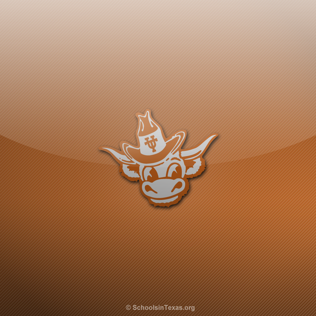 21+ Texas Longhorns Wallpaper 2020 JPG