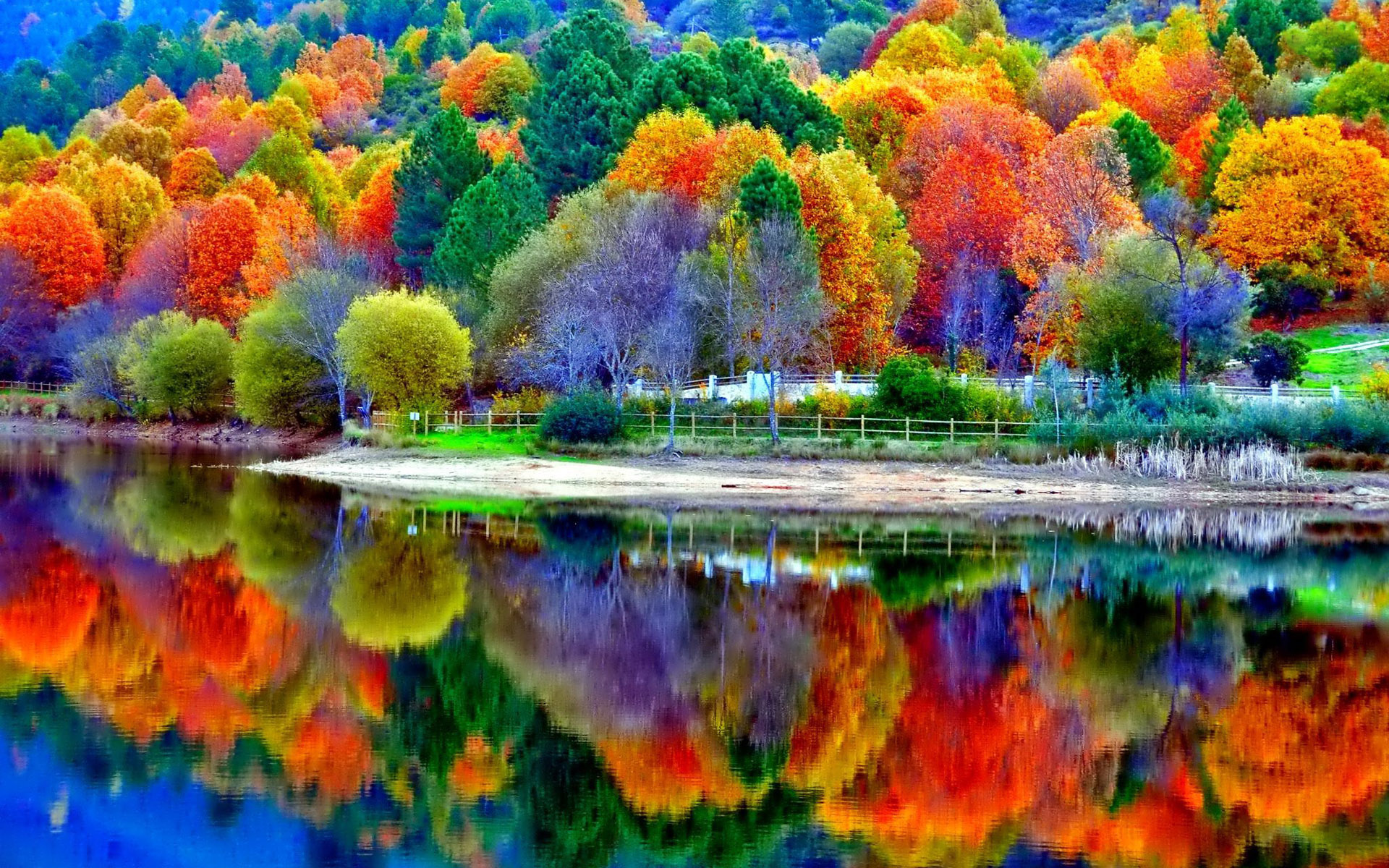 Beautiful Autumn Desktop Wallpapers Top Free Beautiful Autumn Desktop Backgrounds Wallpaperaccess