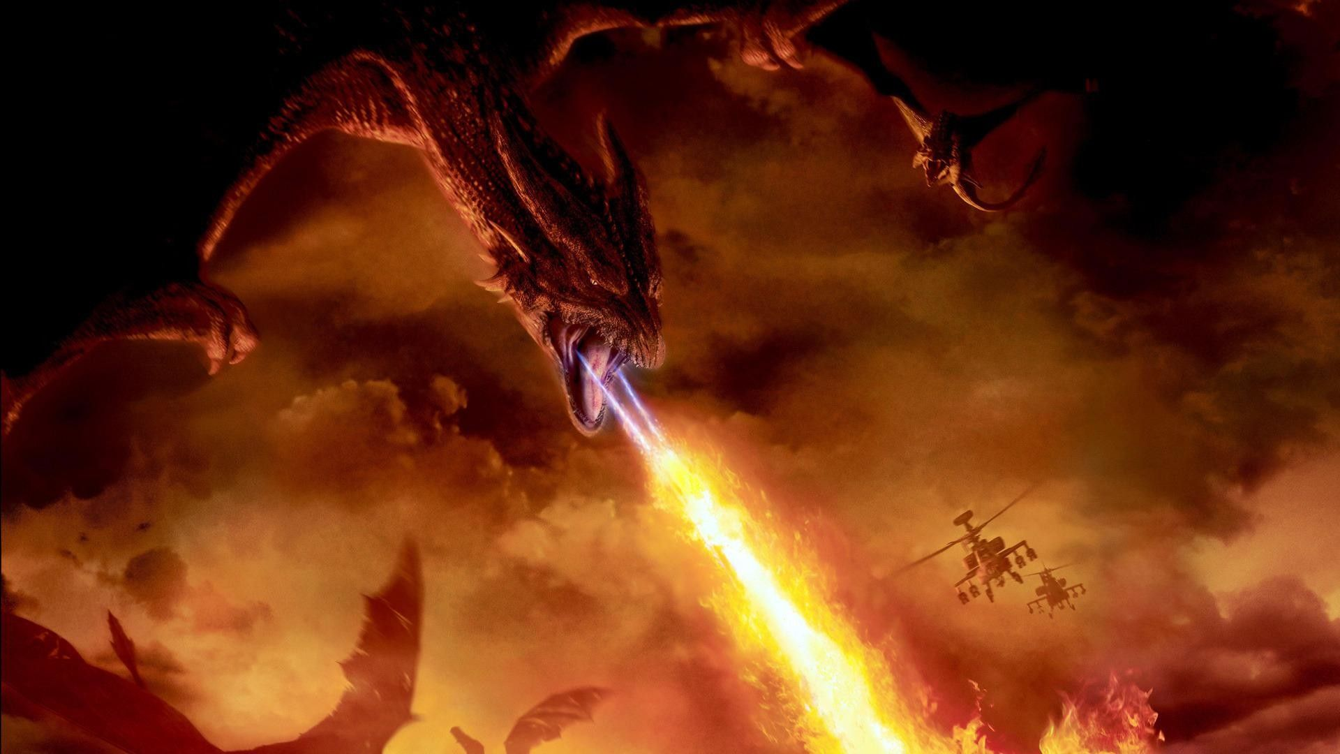 Fire Dragon Wallpapers - Top Free Fire Dragon Backgrounds
