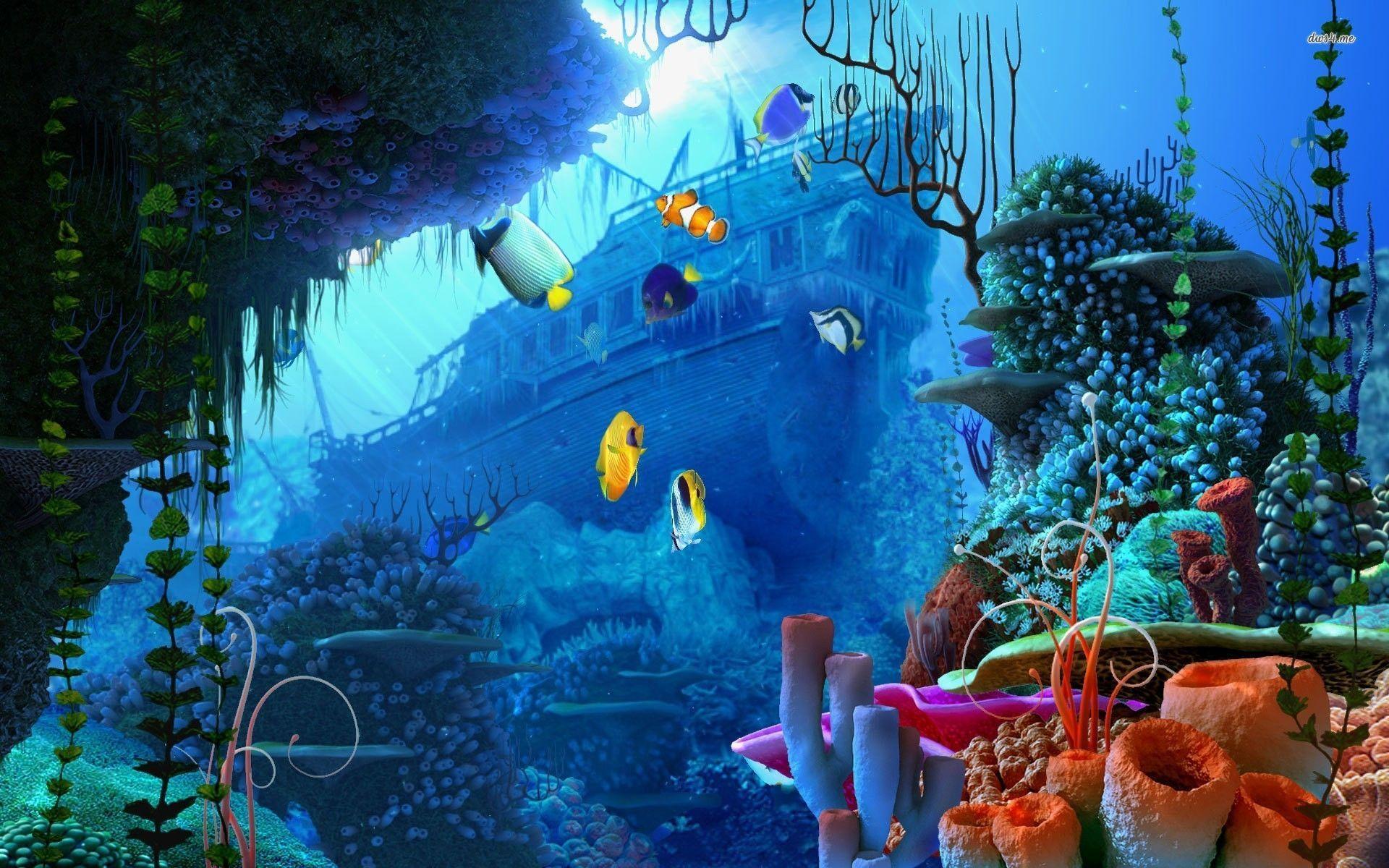 Live Aquarium Wallpapers Top Free Live Aquarium Backgrounds Wallpaperaccess