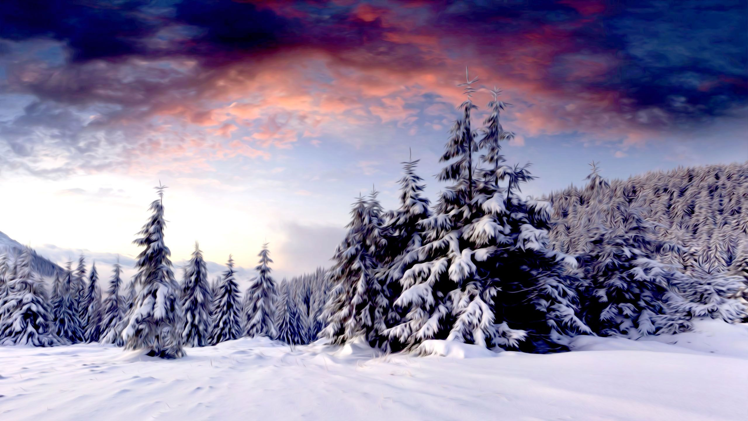 Winter Scenery Wallpapers Top Free Winter Scenery