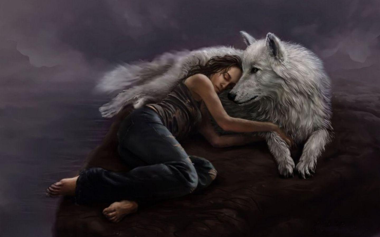 1440x900 love my sói hình nền và hình nền