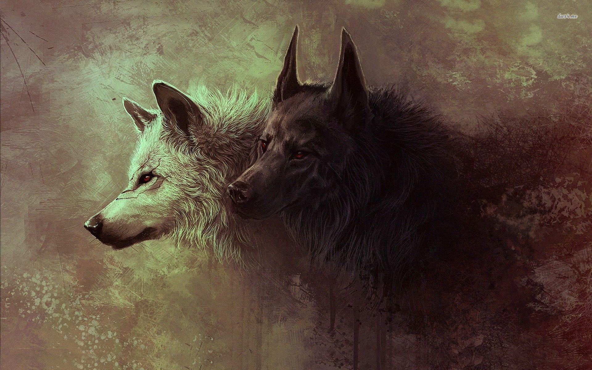 Hình nền con sói đen 1920x1200