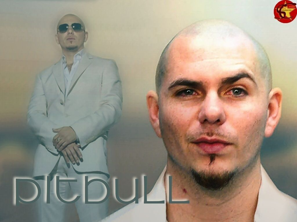 Pitbull Rapper Wallpapers Top Free Pitbull Rapper Backgrounds
