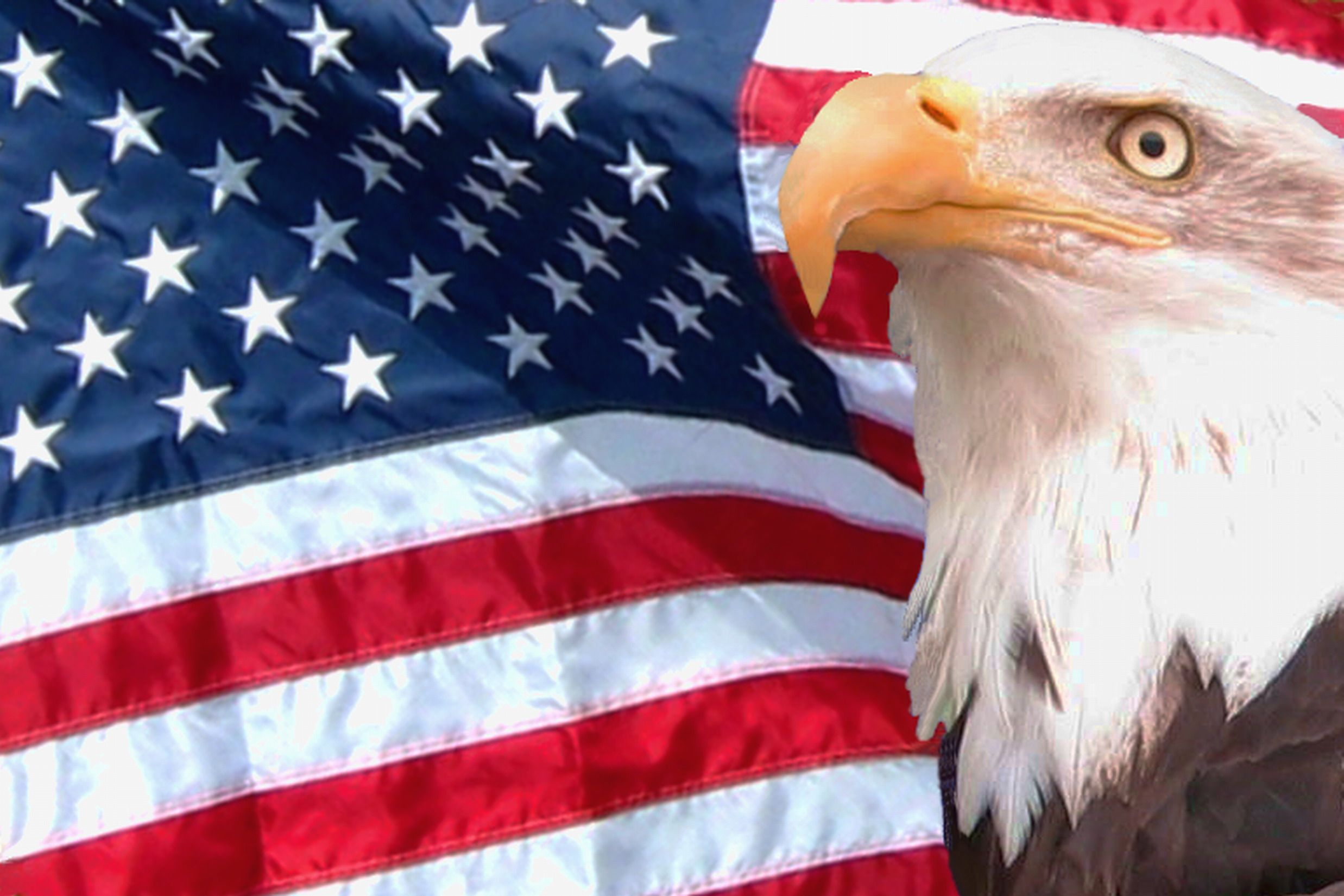 1600x1200 American Flag Eagle Wallpaper