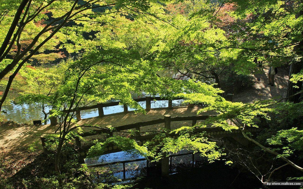 Japanese Zen Garden Wallpapers - Top Free Japanese Zen