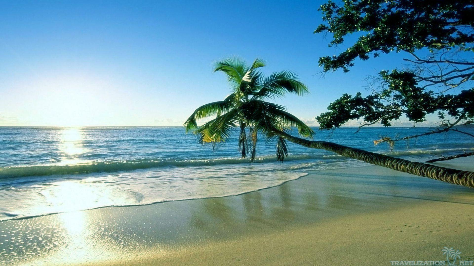 Summer Beach Wallpapers Top Free Summer Beach Backgrounds