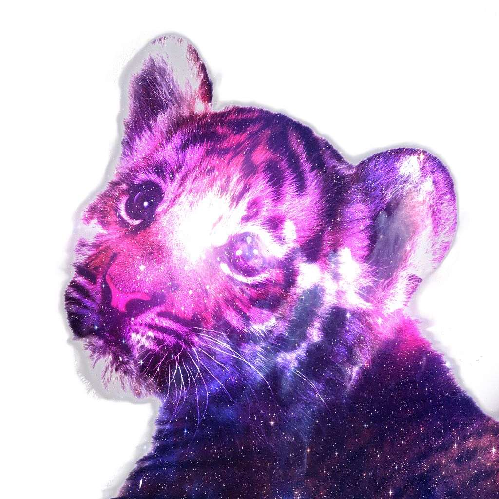 Hipster Tiger Galaxy Wallpapers Top Free Hipster Tiger Galaxy