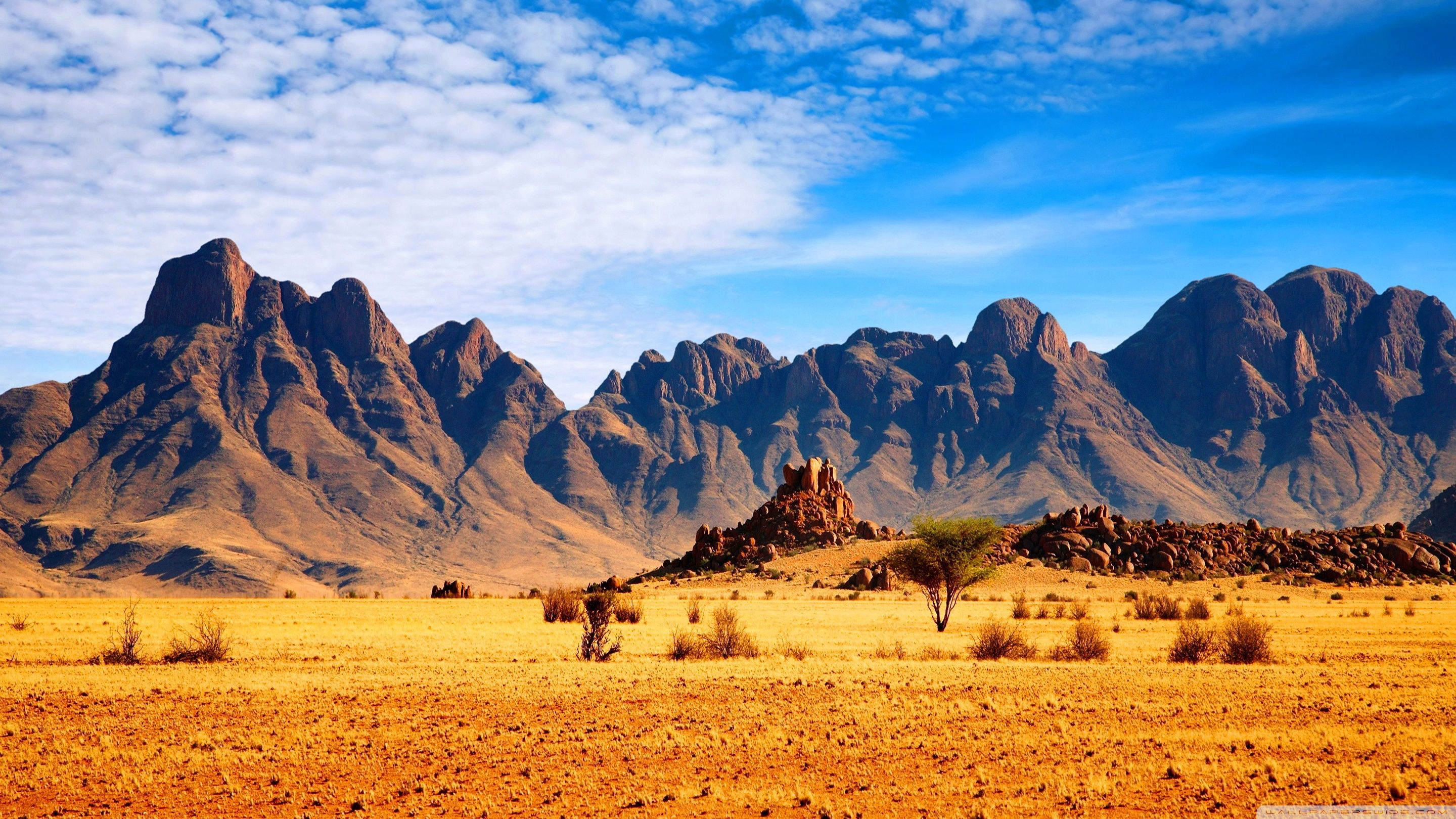 Africa 4K Wallpapers - Top Free Africa 4K Backgrounds ...