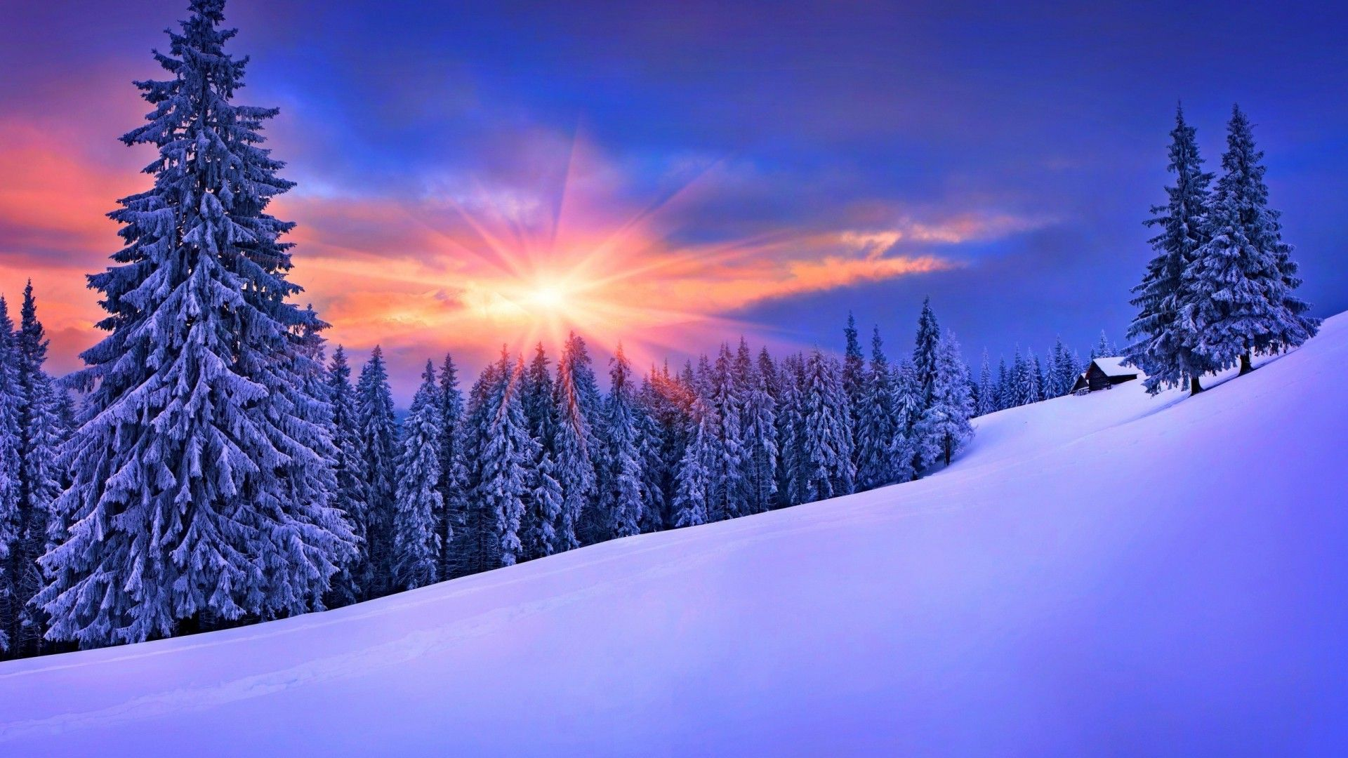 Winter Nature Wallpapers