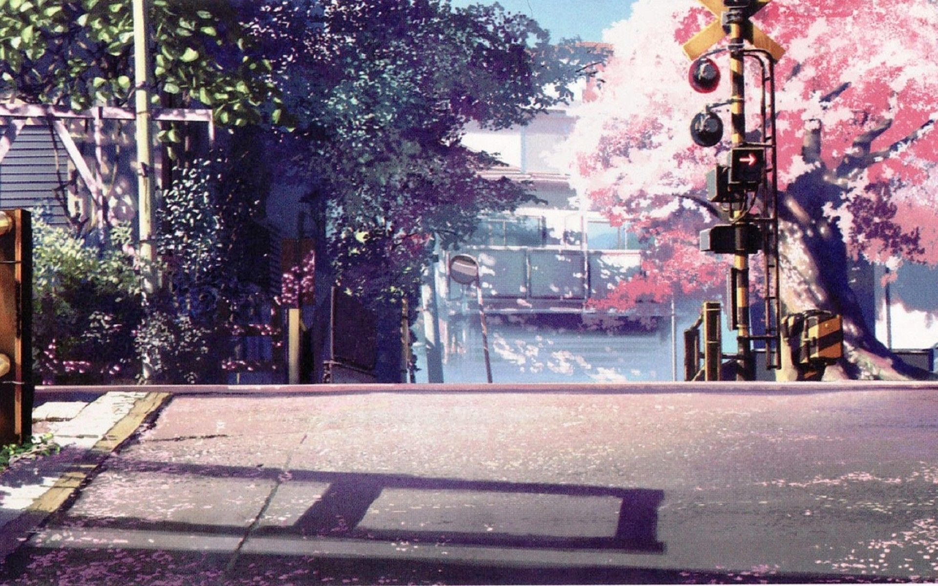 Cherry Blossoms Anime Scenery Wallpapers Top Free Cherry Blossoms Anime Scenery Backgrounds Wallpaperaccess