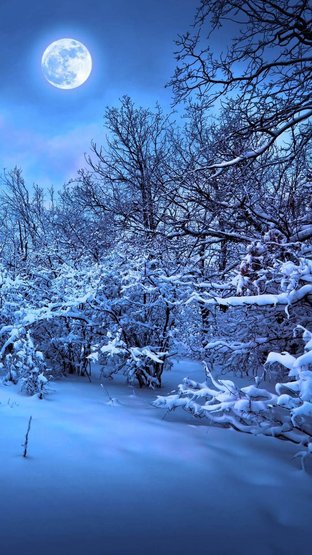 Winter Night Phone Wallpapers - Top ...