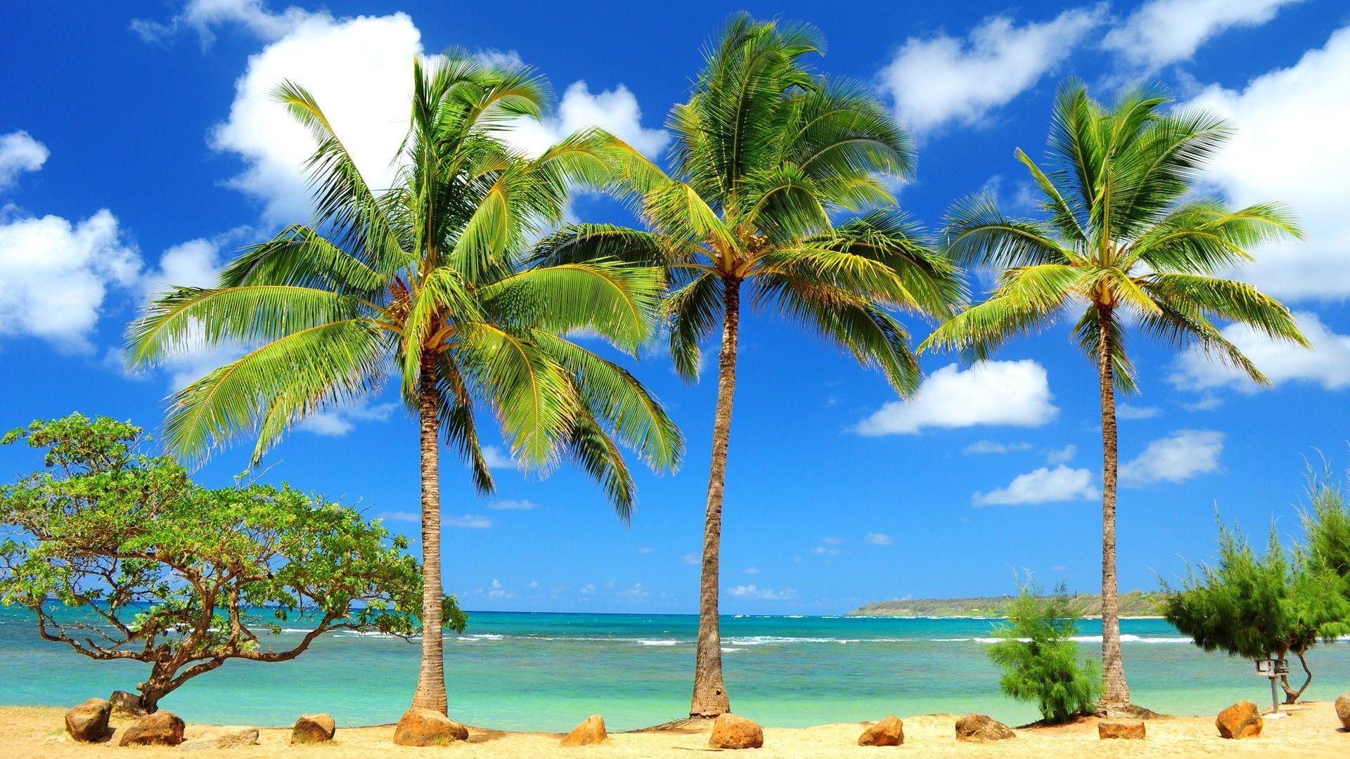Wailua Maui Hawaii HD Desktop Wallpaper for K Ultra HD TV