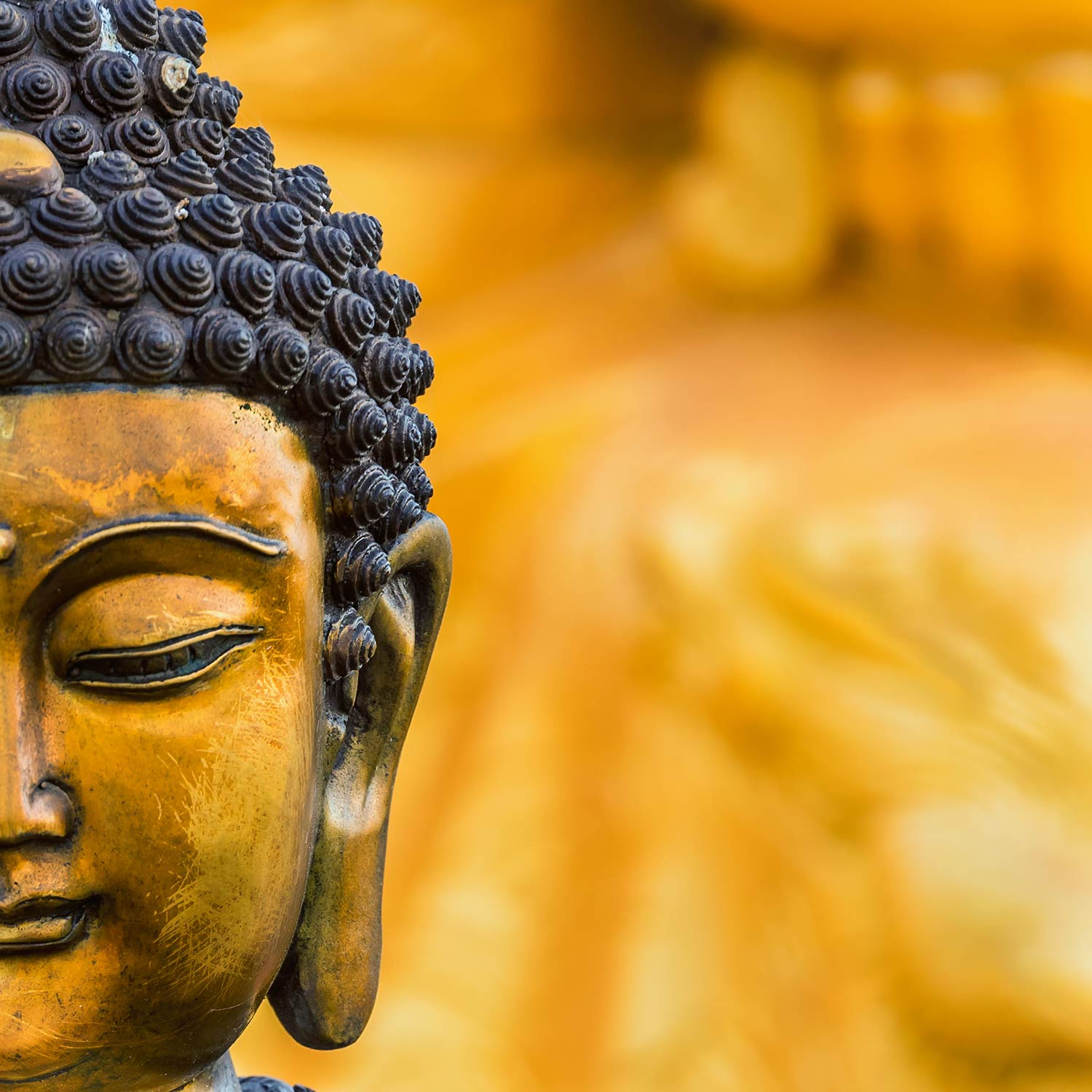 35 Best Free Buddha Wallpapers - WallpaperAccess