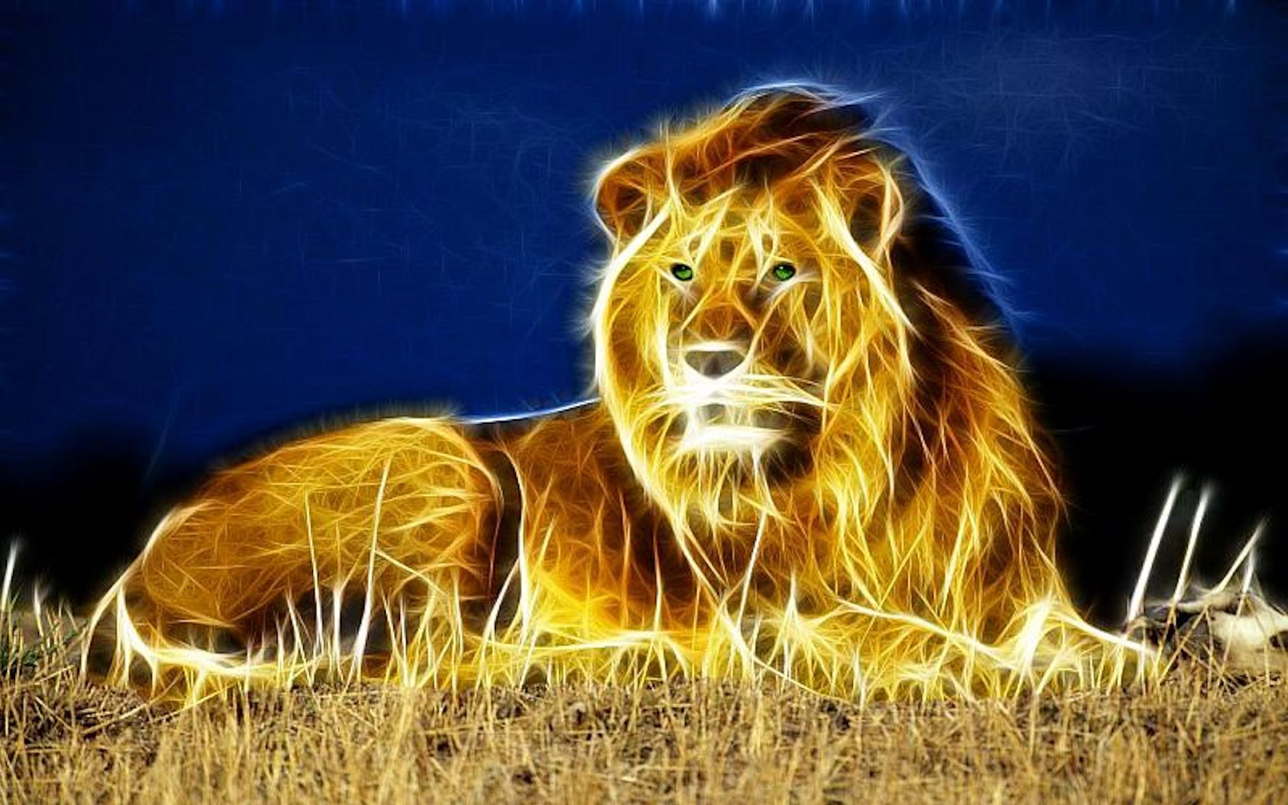 25 Best Free Trippy Lion Wallpapers Wallpaperaccess