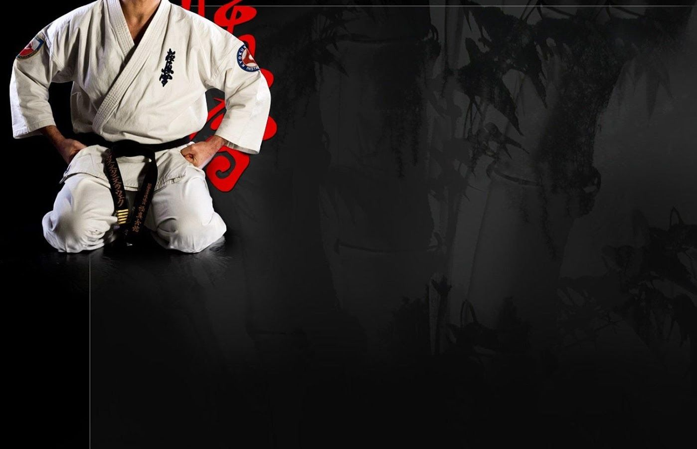 1398x900 Karate Wallpaper HD