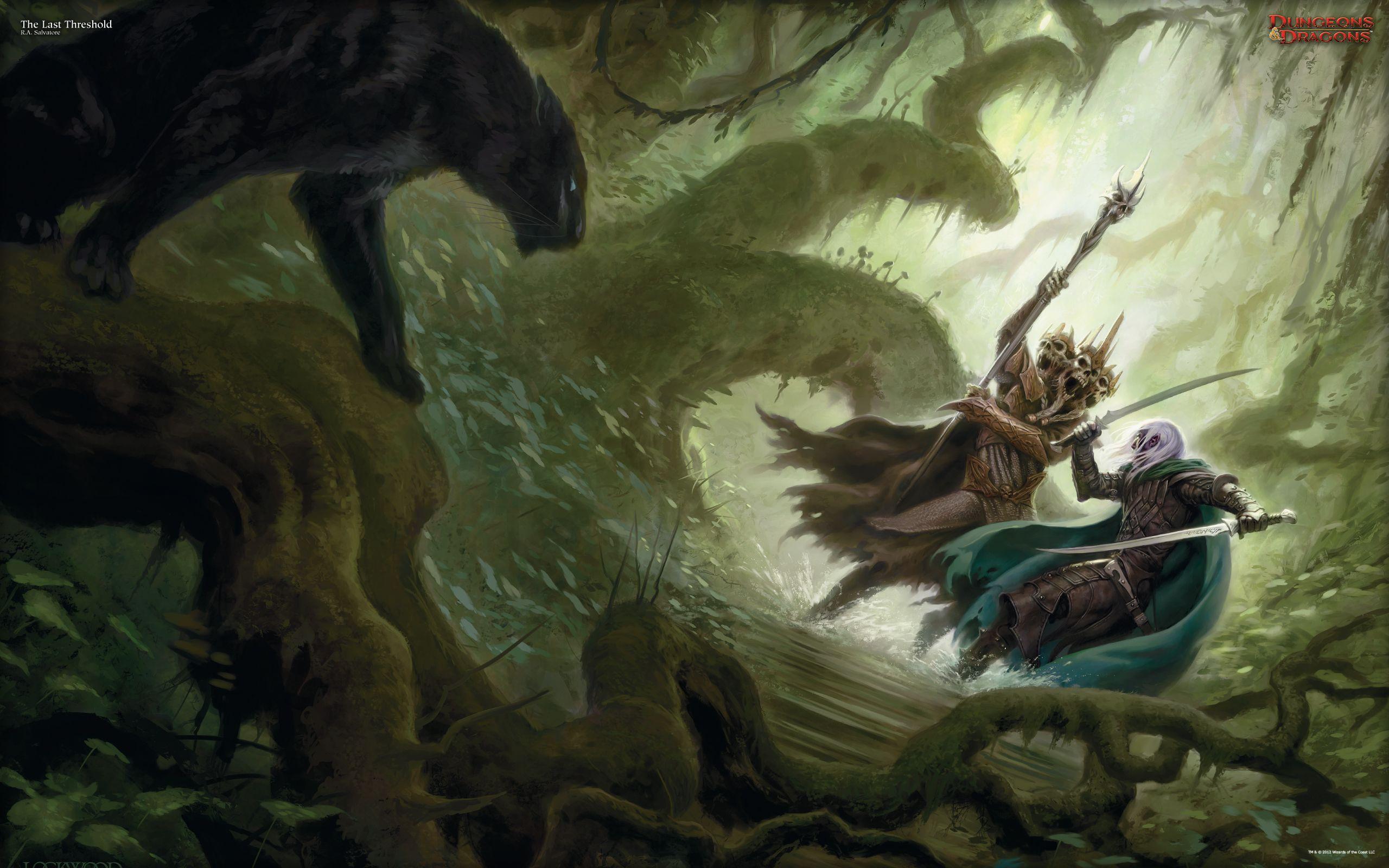 Fantasy Art Wizard Battle