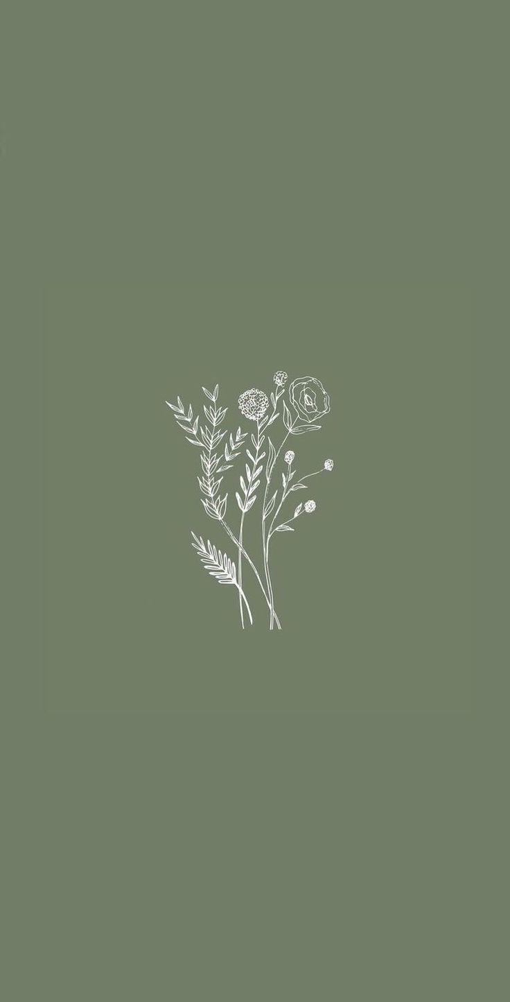 736x1445 Hình minh họa hoa.  Hình nền iphone thẩm mỹ, iPhone