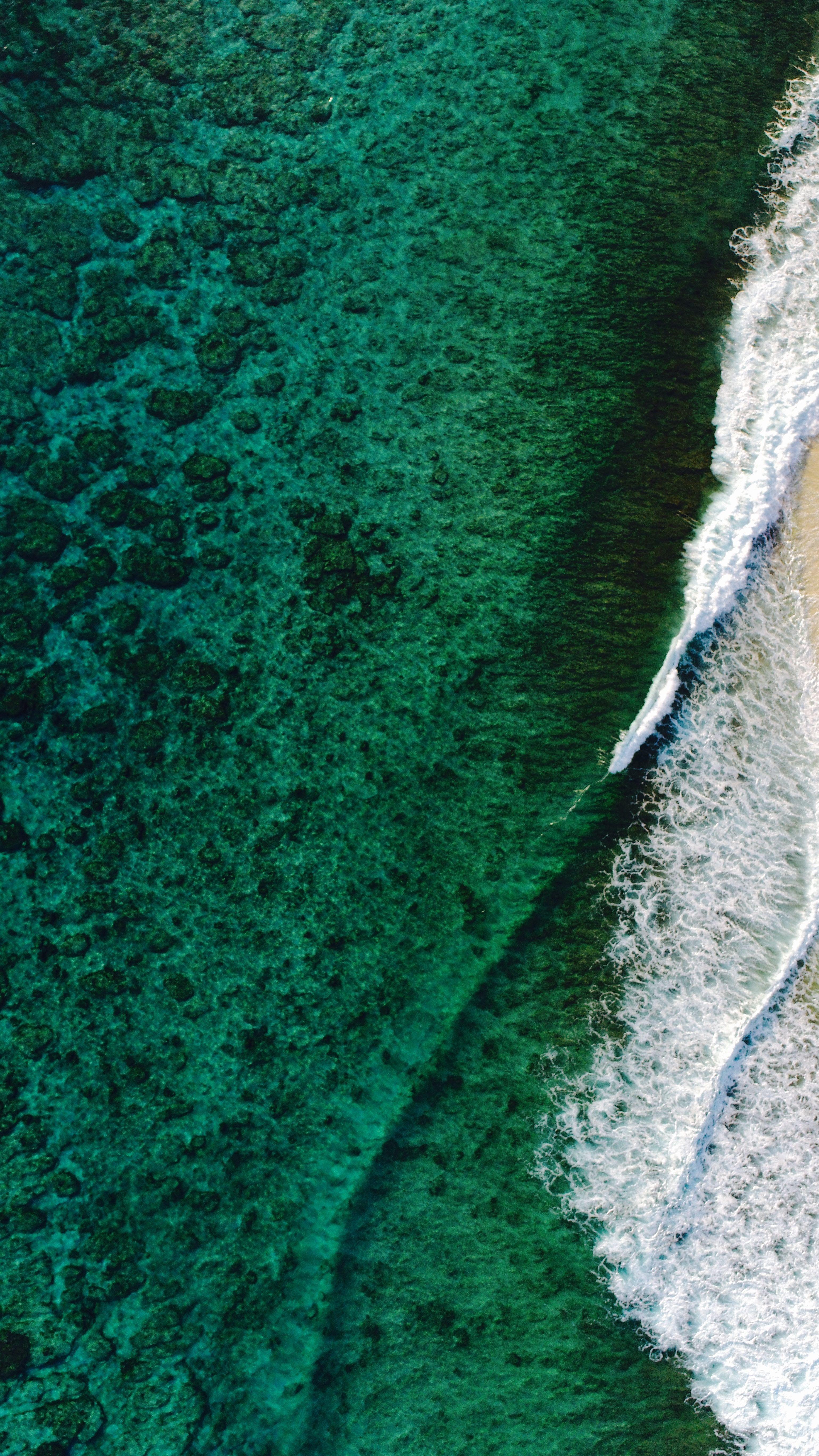 Hình nền vẻ đẹp 3078x5472 màu xanh lá cây - Hình nền thẩm mỹ sóng xanh vào năm 2020
