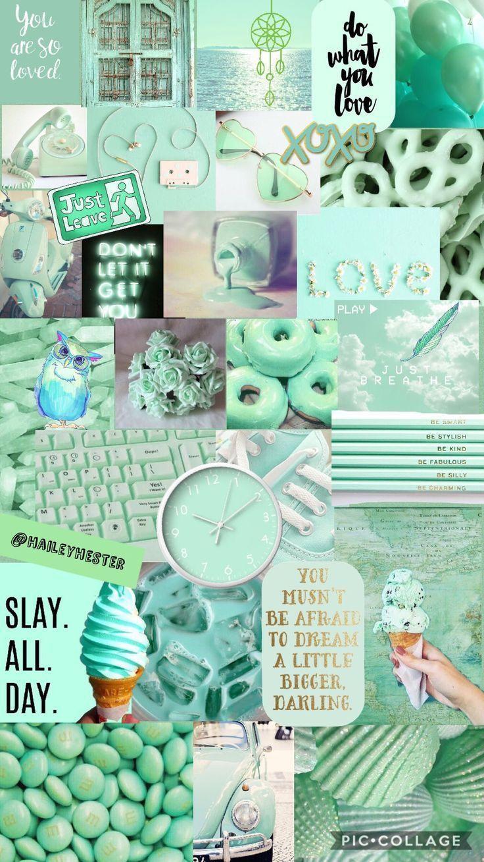 736x1309 Mint Green Aesthetic Collage • - • Hình Nền iPhone Dễ Thương.  cây bạc hà