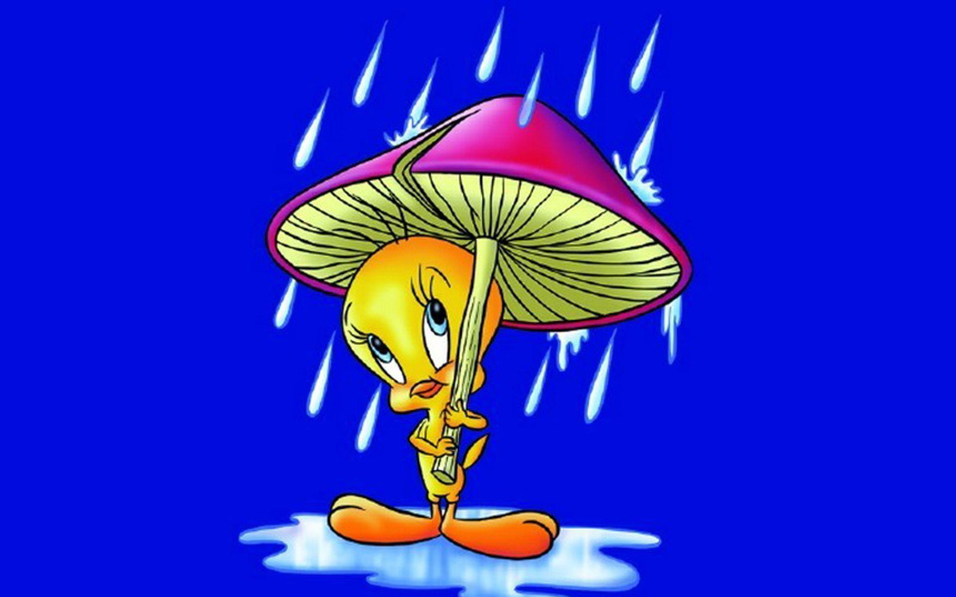 Umbrella Cartoon Wallpapers Top Free Umbrella Cartoon