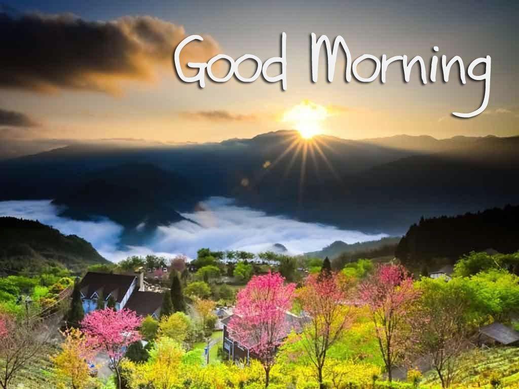 1024x768 Tải xuống miễn phí hình nền đẹp chào buổi sáng lời chúc buổi sáng tốt hình nền HD cho [1024x768] cho Máy tính để bàn, Di động & Máy tính bảng của bạn.  Khám phá Hình nền đẹp Chào buổi sáng.  Hình nền Chào buổi sáng, Chào buổi sáng