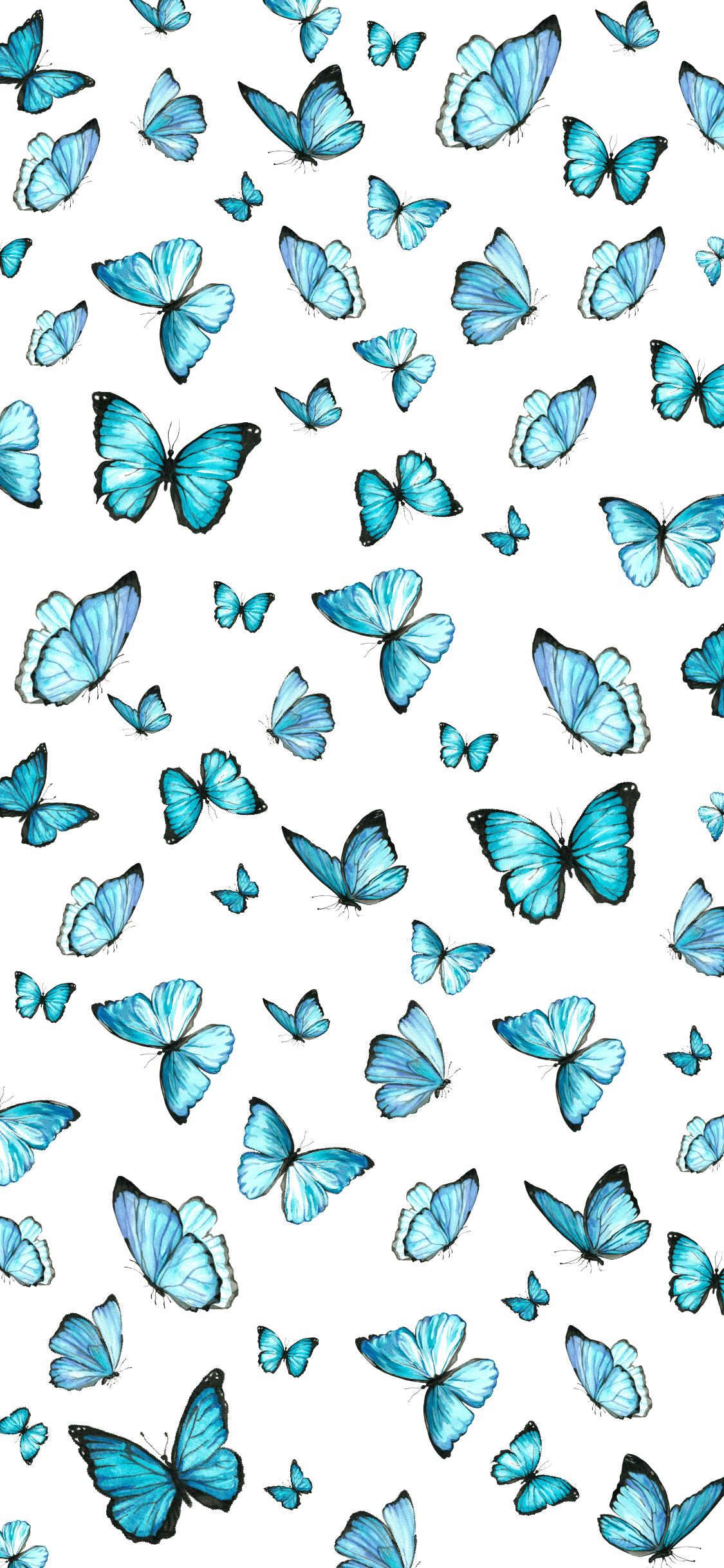 Butterfly Emoji Wallpapers Top Free Butterfly Emoji Backgrounds Wallpaperaccess