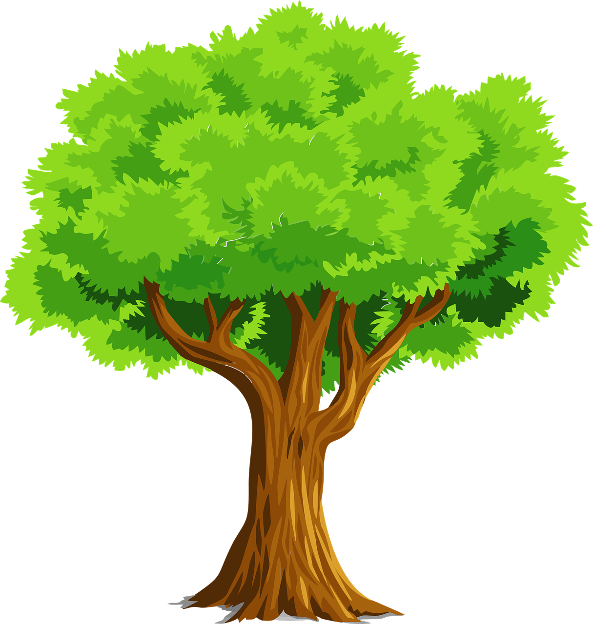 Cartoon Trees Wallpapers Top Free Cartoon Trees Backgrounds Wallpaperaccess Embed this art into your website: cartoon trees wallpapers top free