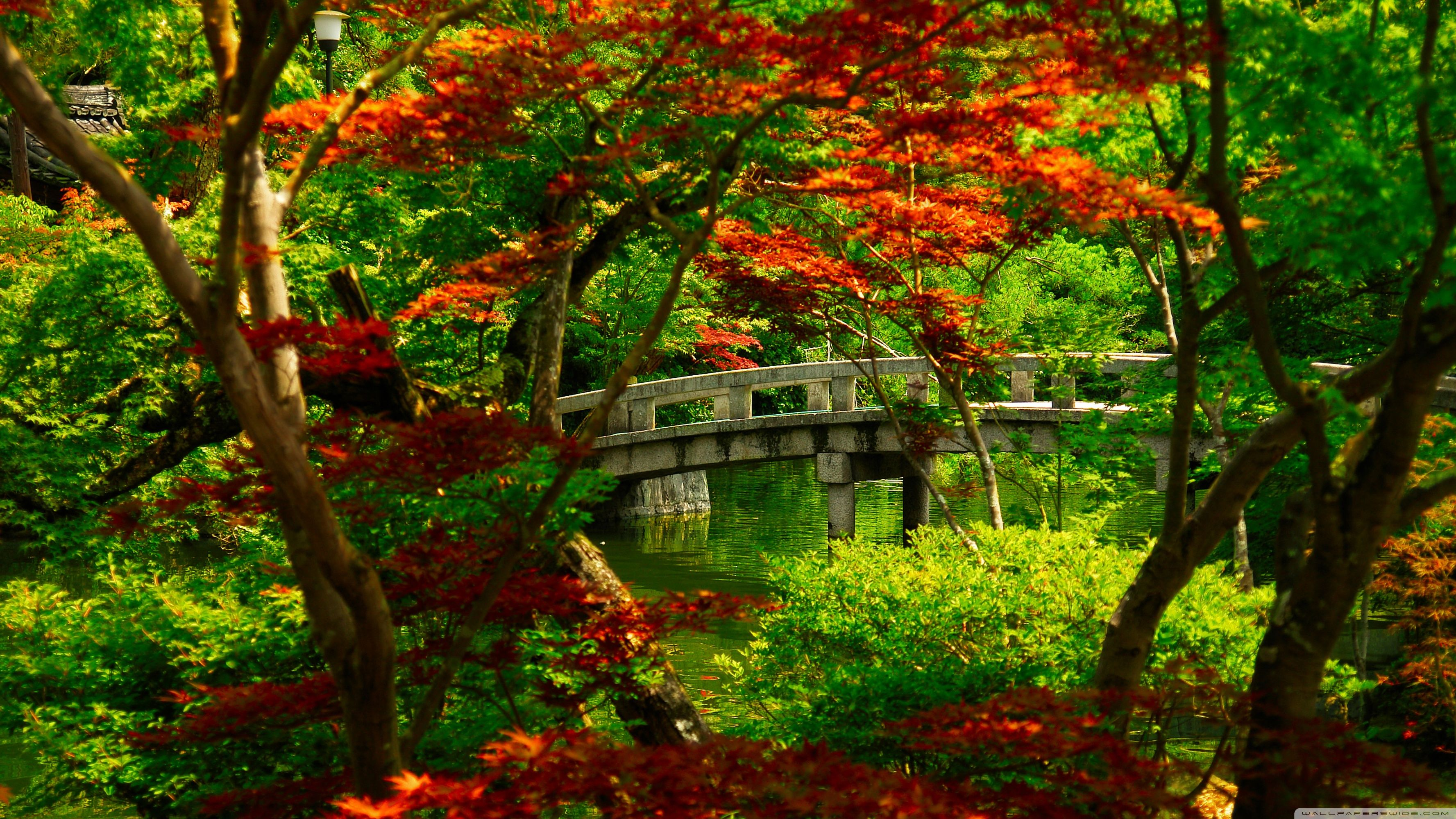 Japanese Garden Wallpapers: Top Free Japanese HD Backgrounds
