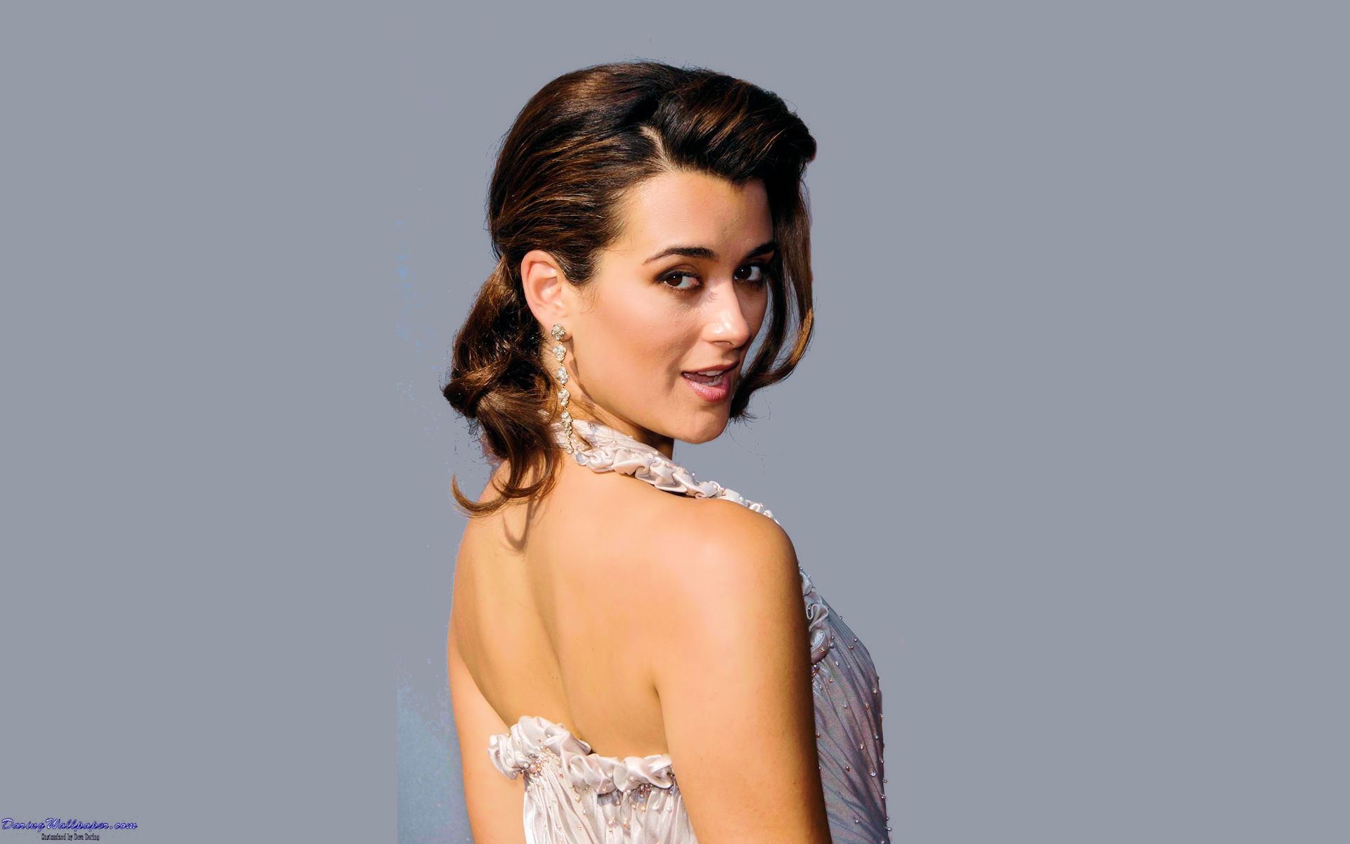 Ziva Ncis Wallpapers Top Free Ziva Ncis Backgrounds