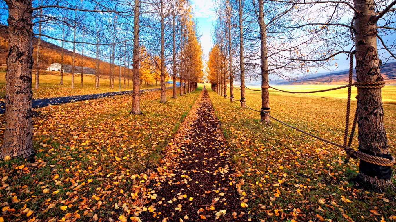 November Nature Wallpapers Top Free November Nature Backgrounds Wallpaperaccess