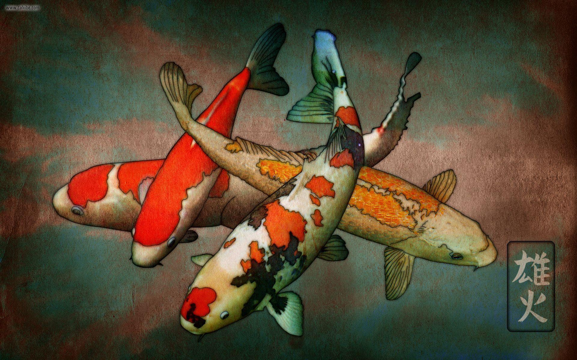Koi Art Wallpapers Top Free Koi Art Backgrounds