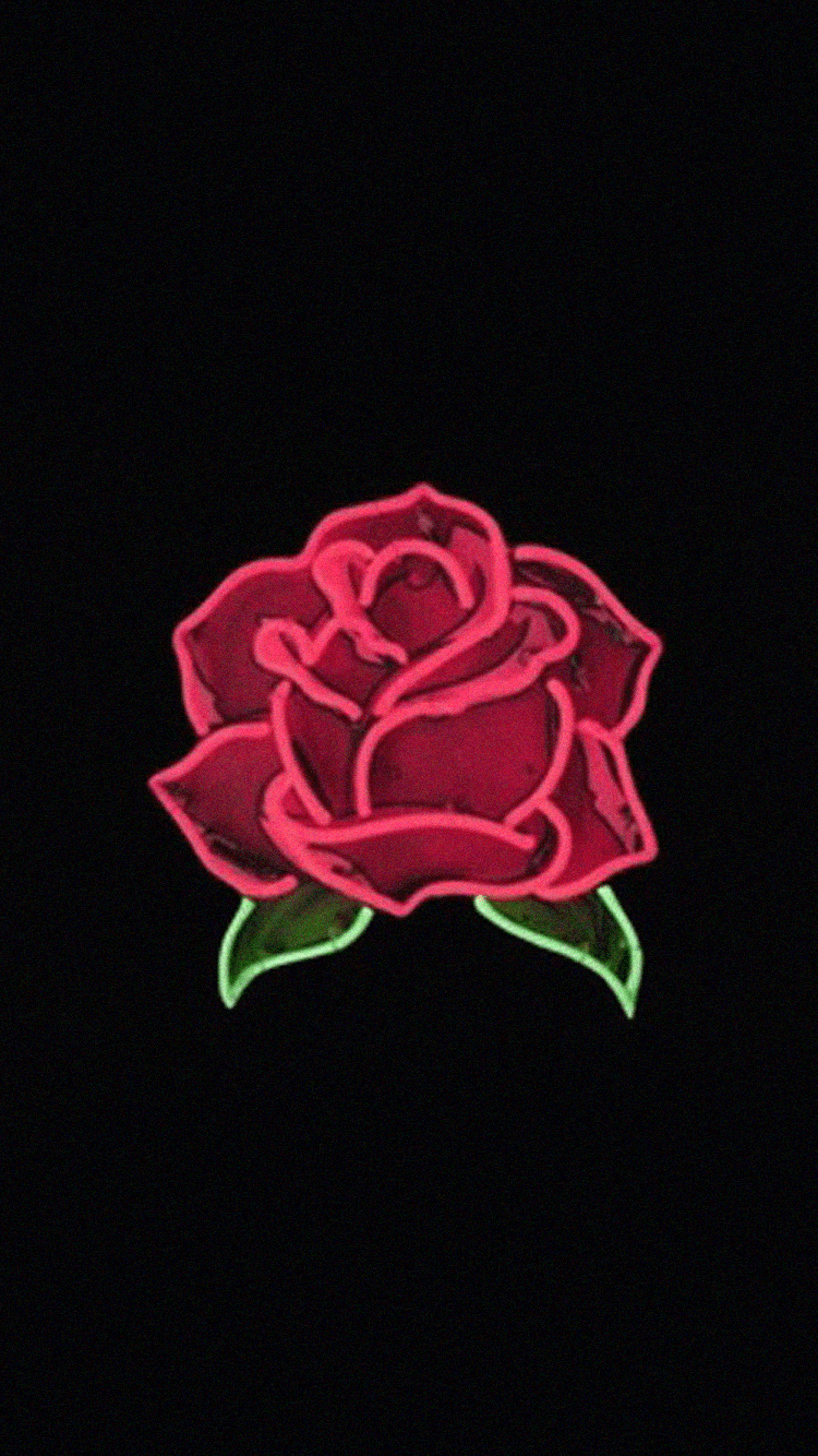 Aesthetic Rose Wallpapers , Top Free Aesthetic Rose