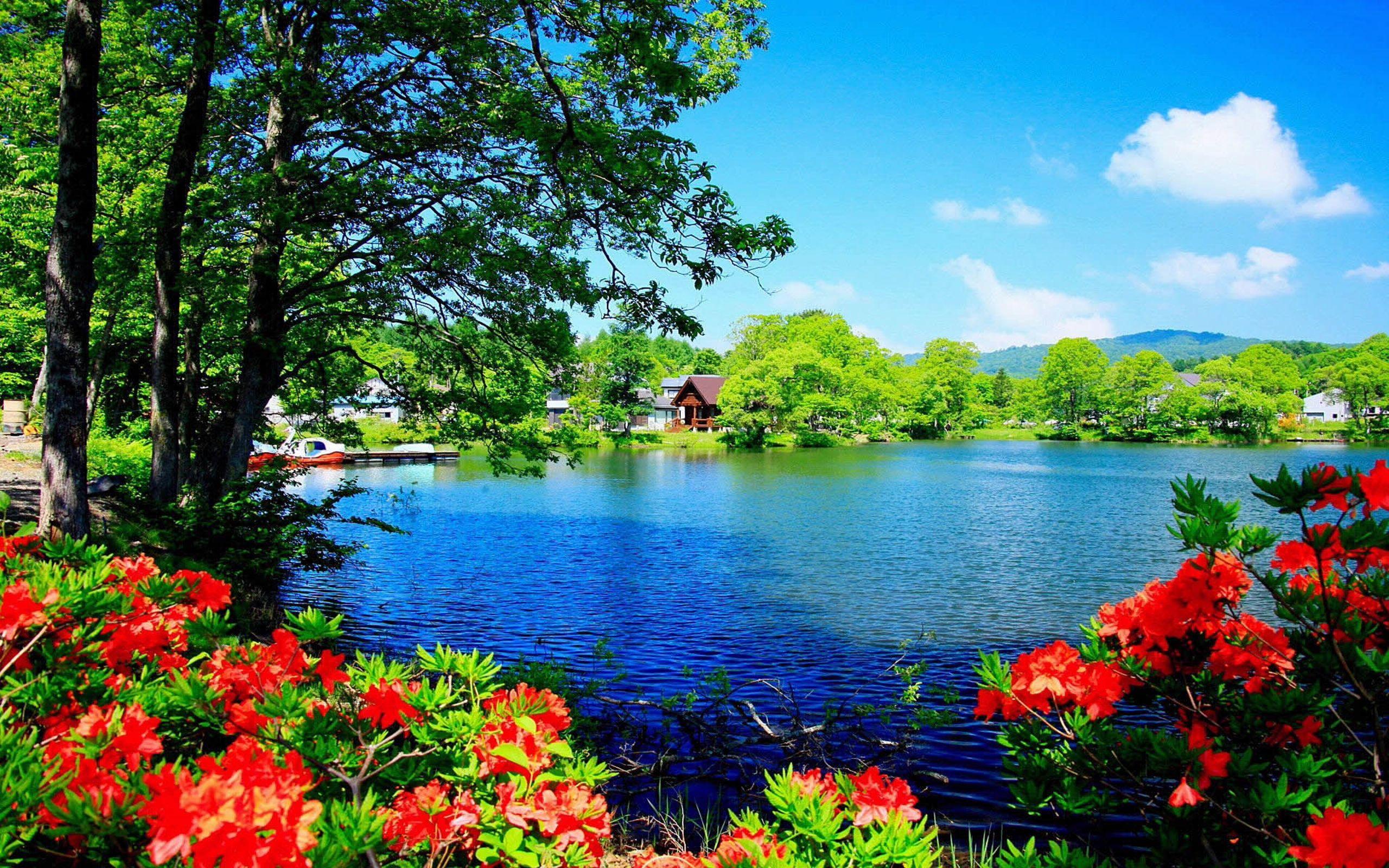 Beautiful Scenery Desktop Wallpapers Top Free Beautiful