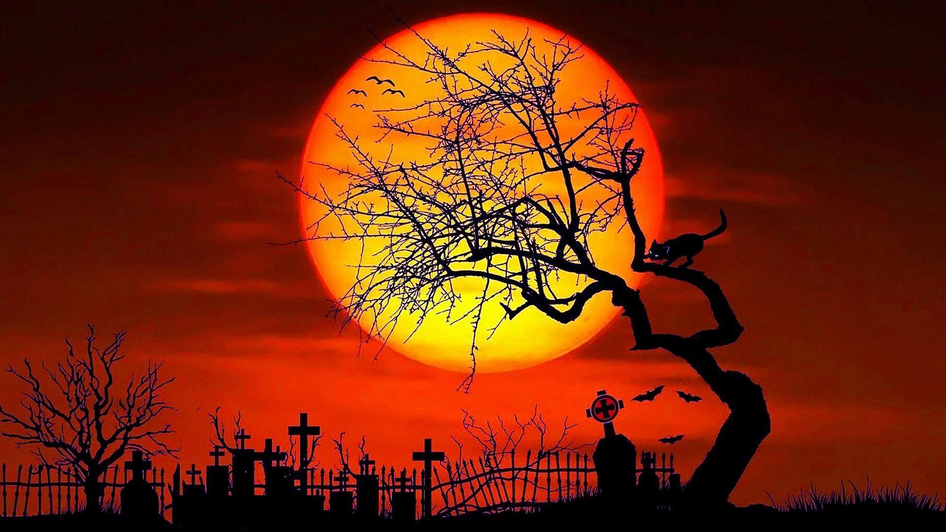 """1920x1080 Halloween Desktop Wallpapers, Halloween Pictures Free, New ..."""">"""