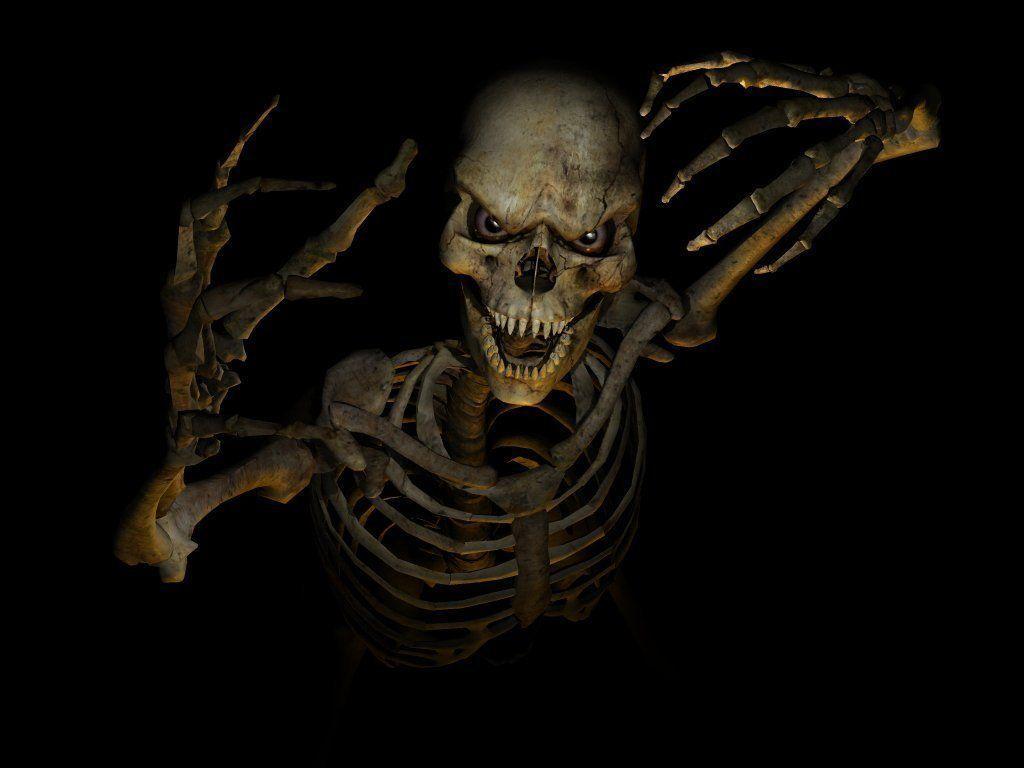 1024x768 Skeleton Danger Hình nền và Hình ảnh.  10 mặt hàng