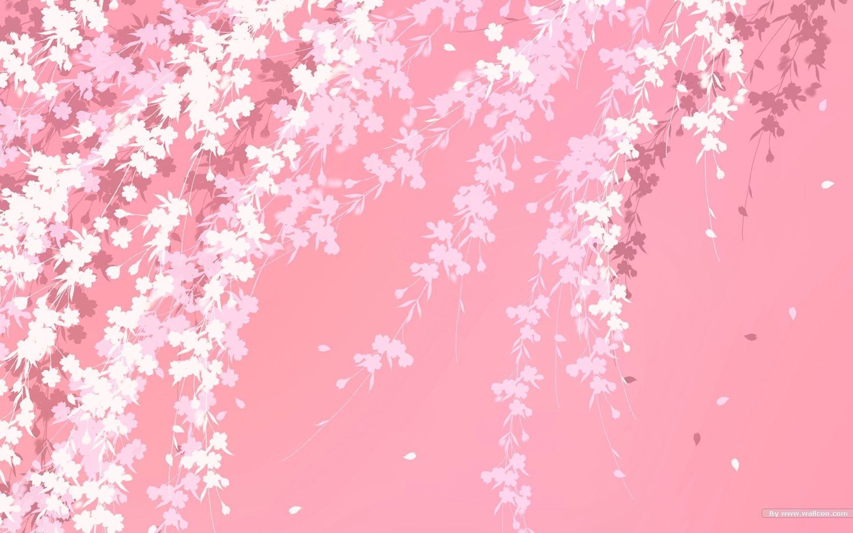 Japanese Pink Wallpapers Top Free Japanese Pink Backgrounds Wallpaperaccess