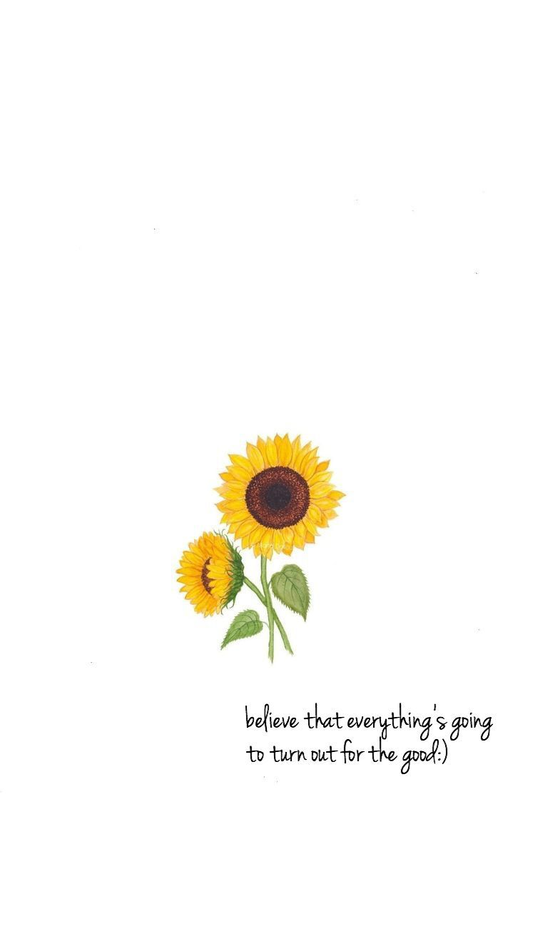 Sunflower Quotes Wallpapers - Top Free Sunflower Quotes ...