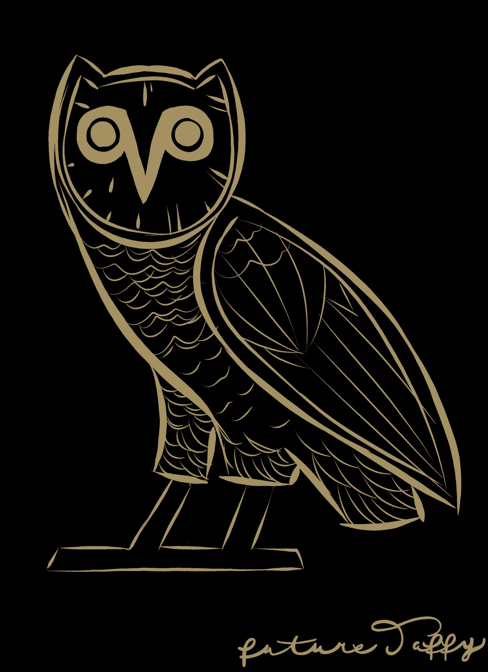 Drake Owl Wallpapers - Top Free Drake Owl Backgrounds ...