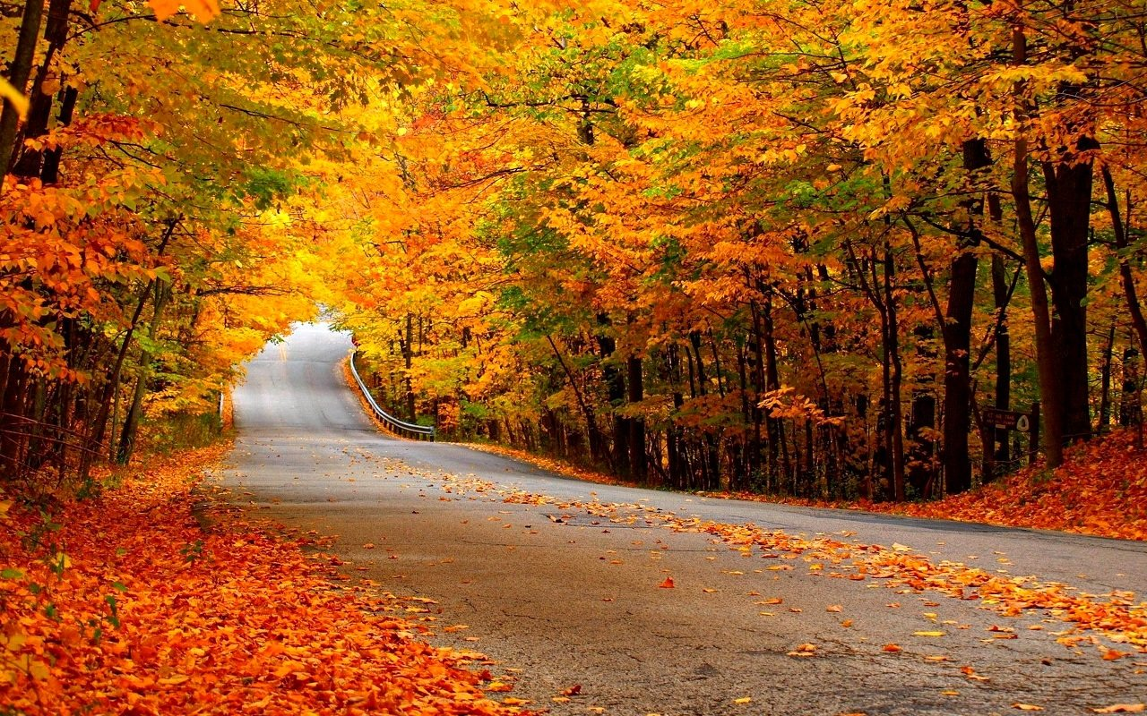 High Resolution Fall Wallpapers Top Free High Resolution