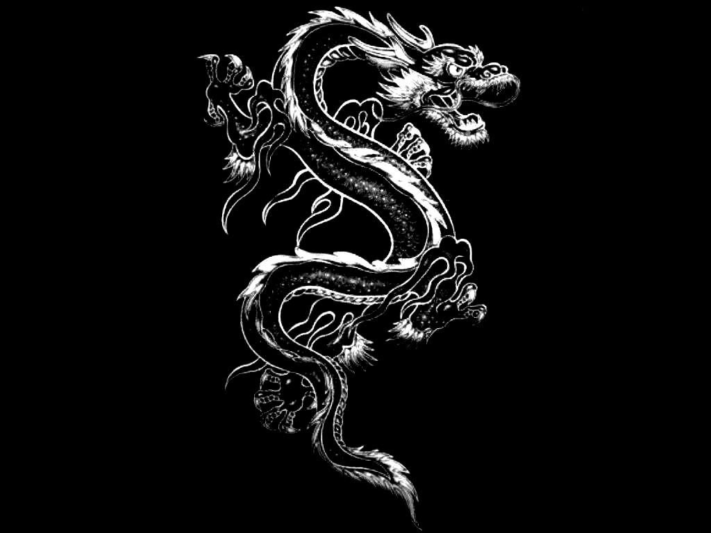 Black And White Dragon Wallpapers Top Free Black And White