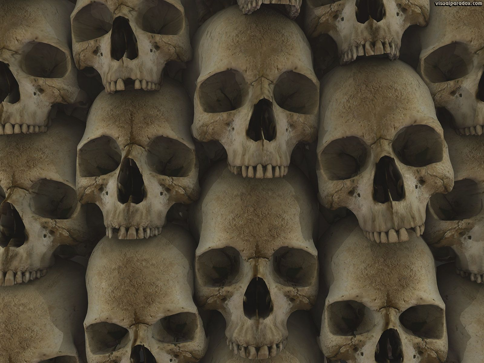 Scary Skulls Wallpapers Top Free Scary Skulls Backgrounds