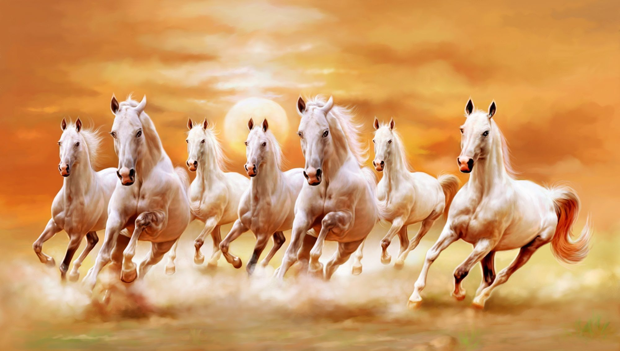 Horse Wallpapers Top Free Horse Backgrounds Wallpaperaccess