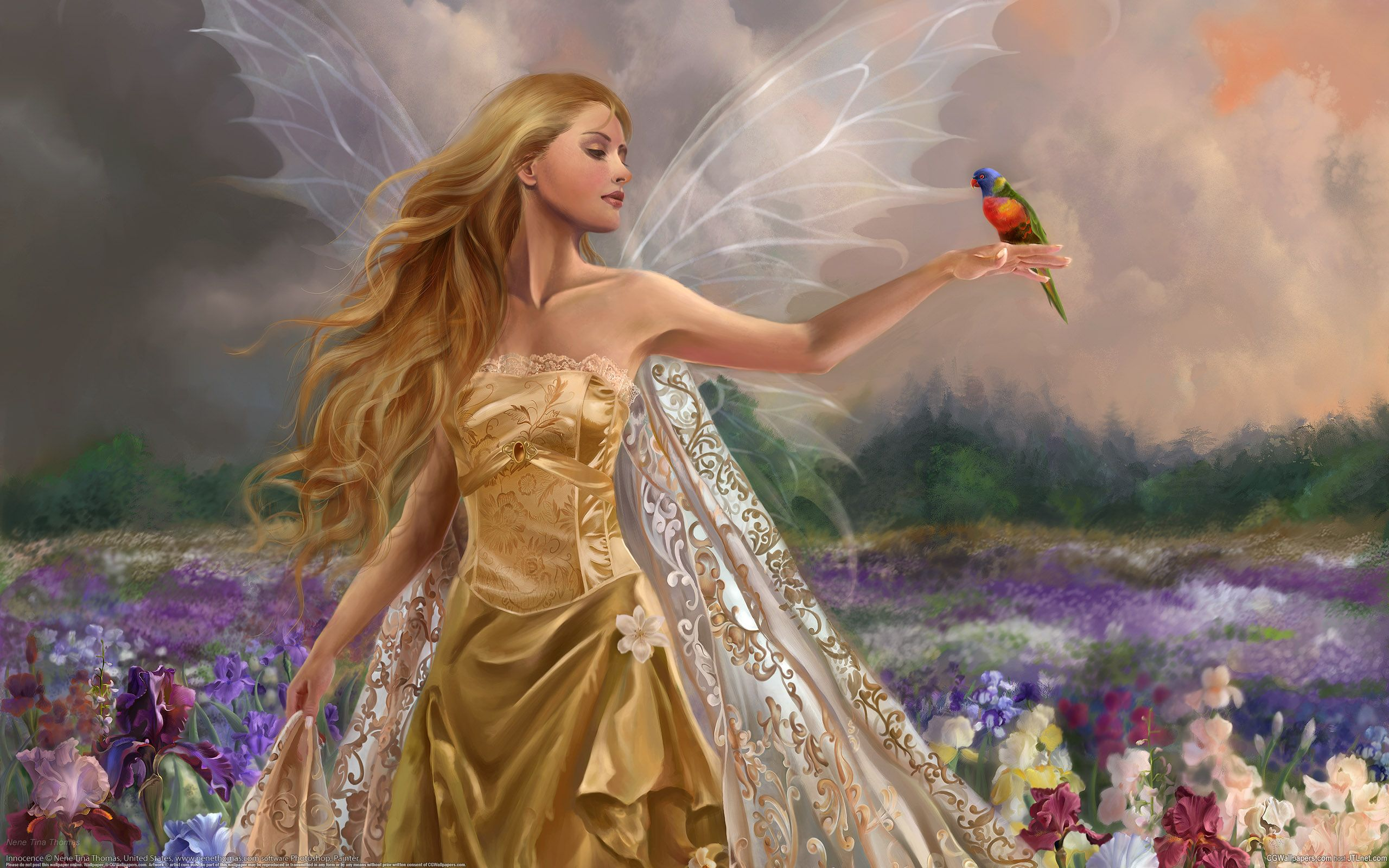 Angels And Fairies Wallpapers Top Free Angels And Fairies Backgrounds Wallpaperaccess