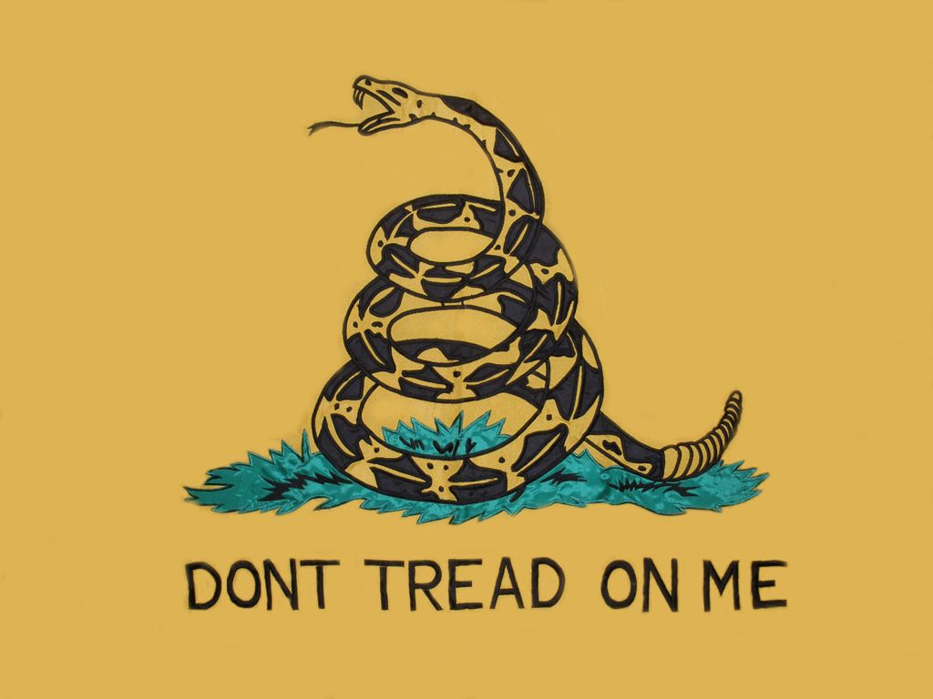 Don T Tread On Me Flag Wallpapers Top Free Don T Tread On Me Flag