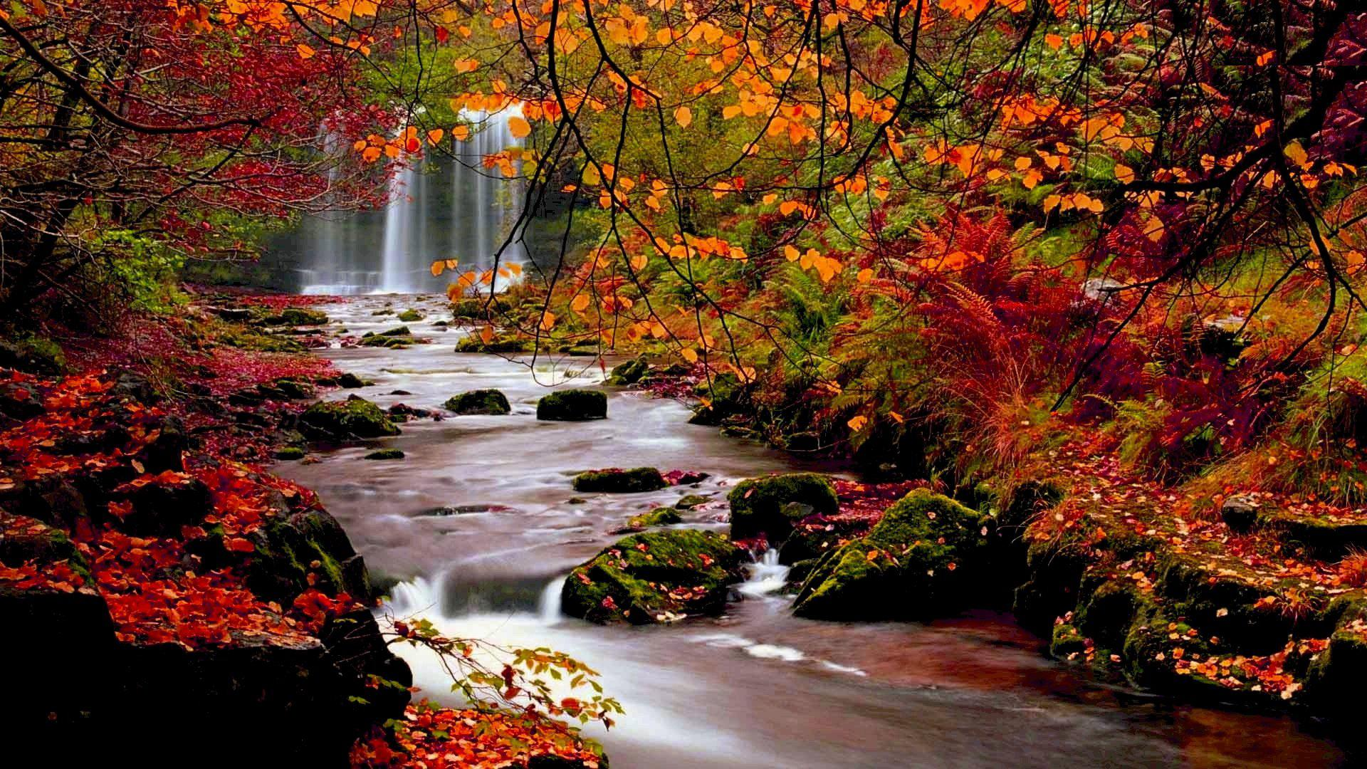Fall Nature Desktop Wallpapers Top Free Fall Nature