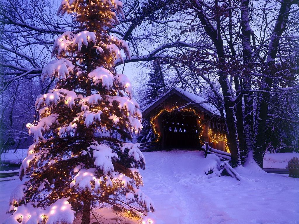 Winter Holiday Desktop Wallpapers Top Free Winter Holiday Desktop Backgrounds Wallpaperaccess
