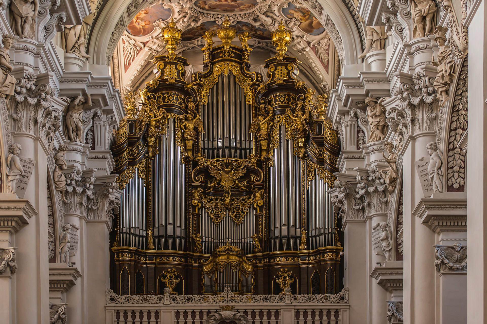 Organ Wallpapers   Top Free Organ Backgrounds   WallpaperAccess
